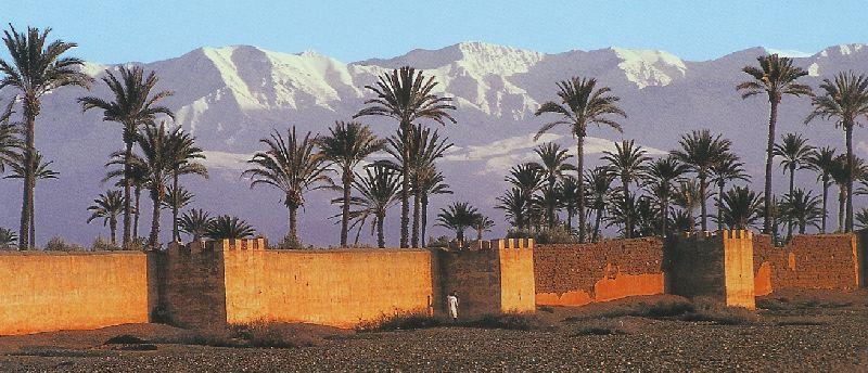 marrakech06.jpg