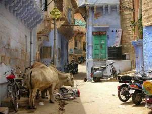 _jodhpur_street_ville_bleue1