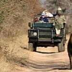 Kruger_park